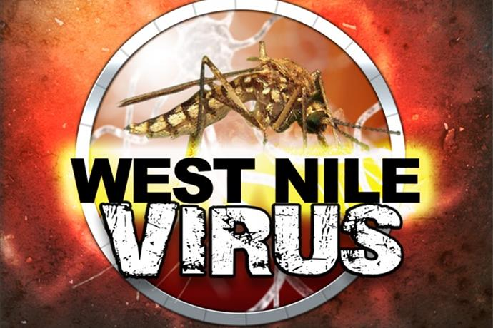 Mosquitoes Test Positive for West Nile in McLean County_-4761526252850099775