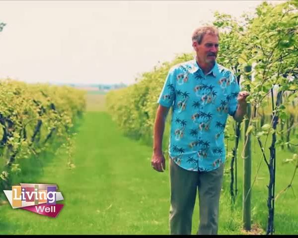 Local Winery Owner Discusses Cancer Diagnosis_23328053-159532