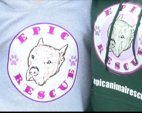 Local Woman Works to Rescue Dogs