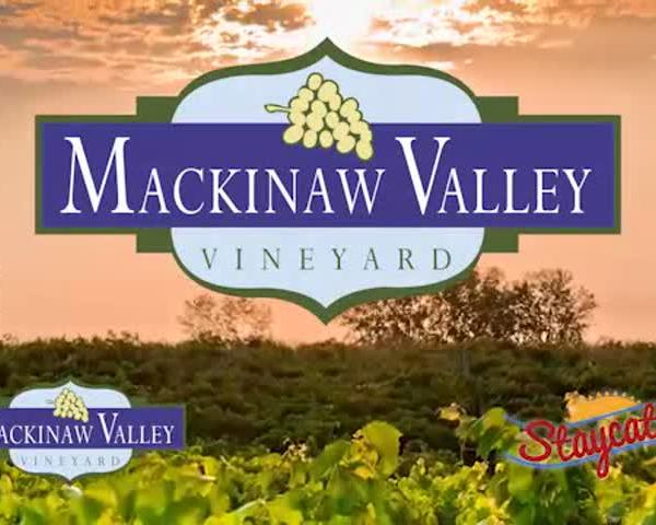 Mackinaw Valley Vineyard 2017