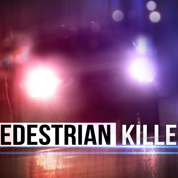 pedestrian killed_1504210924361.jpg