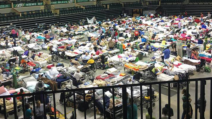 Full Shelter Tampa WFLA 720