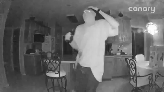 IRONWOOD BURGLARY_1530220501194.jpg.jpg