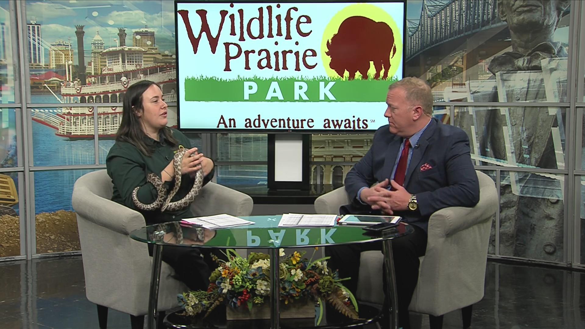 Wildlife Prairie Park Winter Events