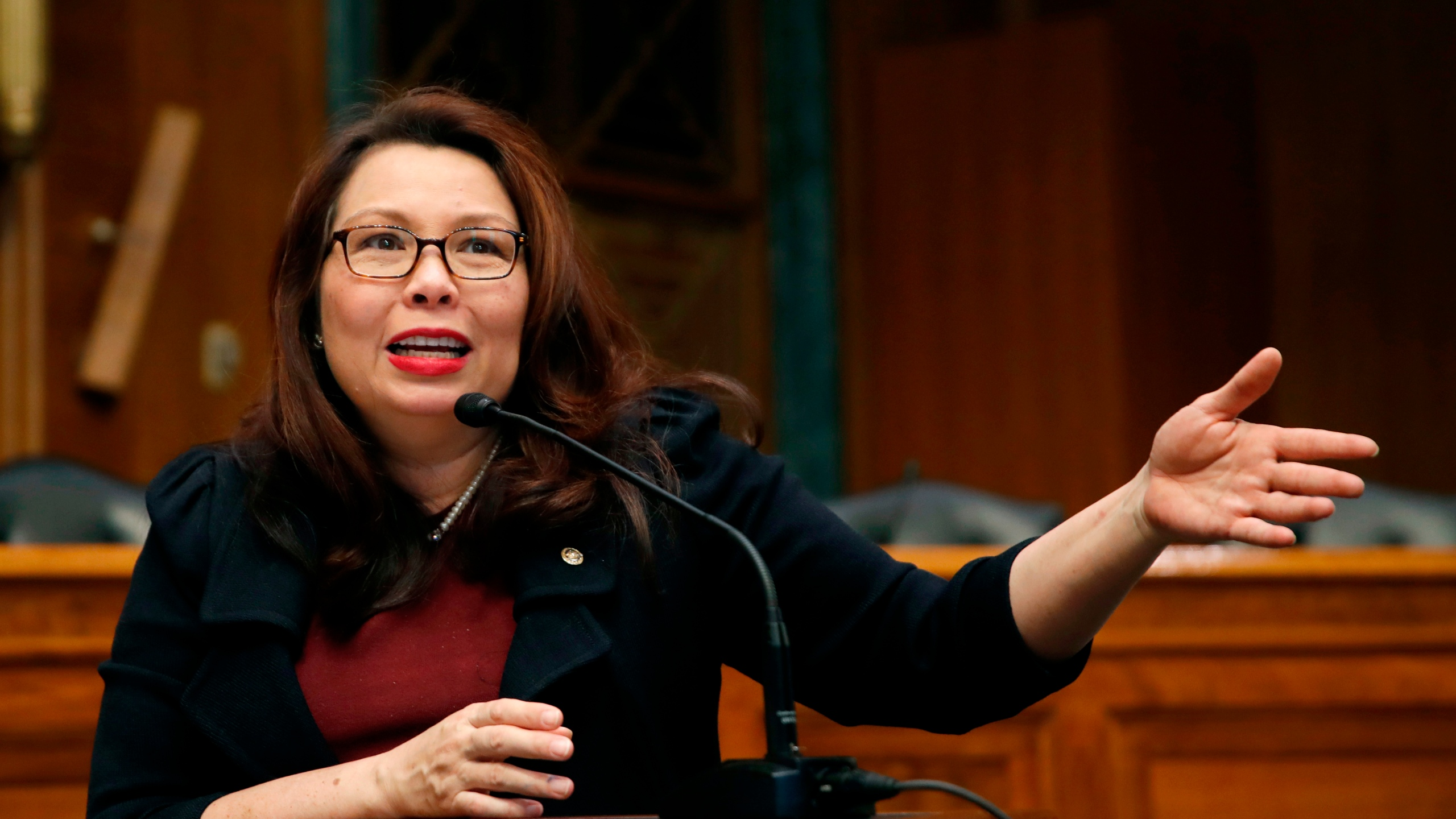 Senate_Duckworth_52487-159532.jpg01952806