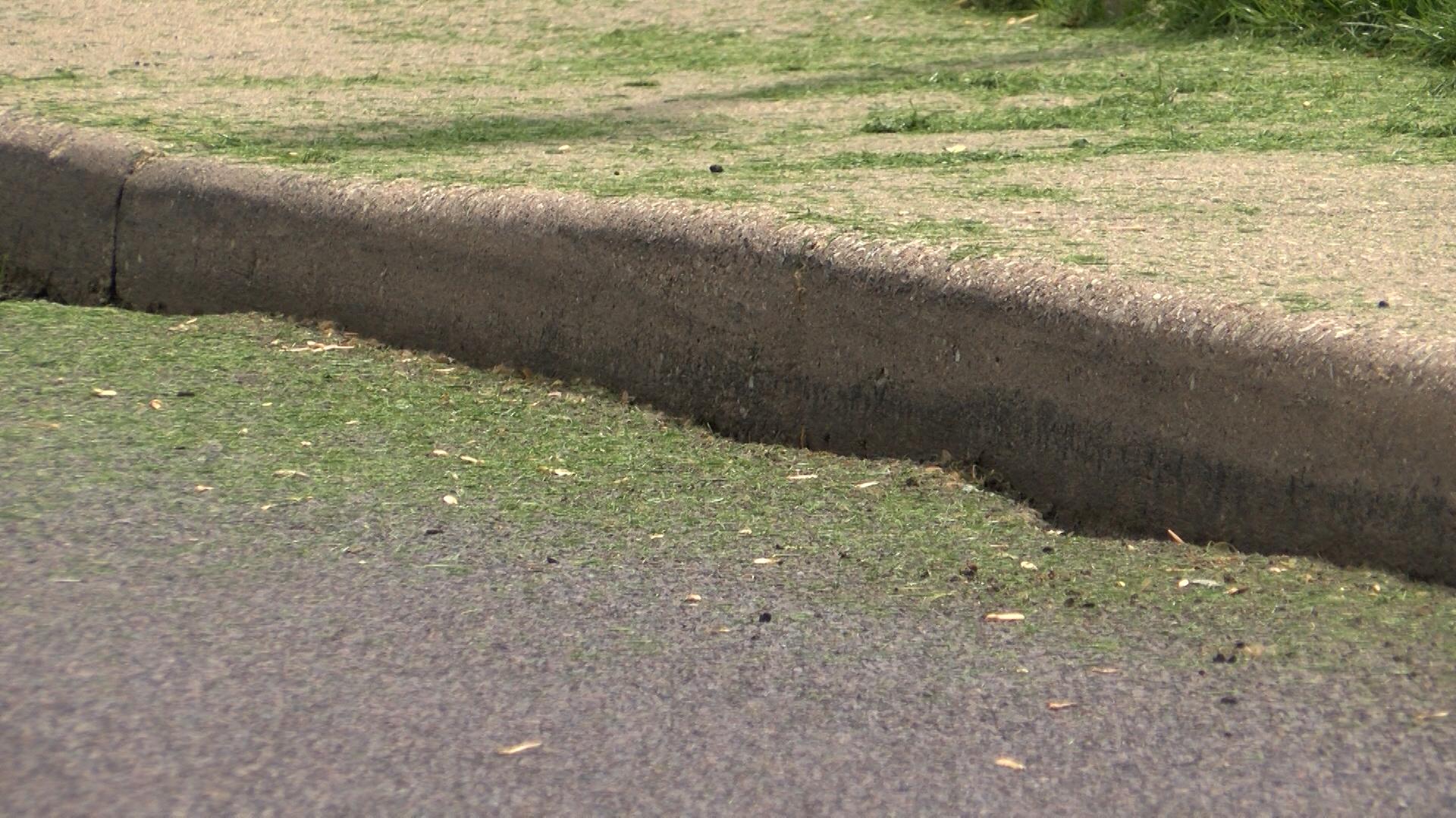 Grass in streets_1558040301156.jpg.jpg