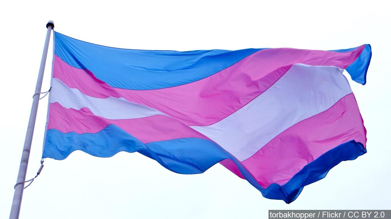 trans transgender pride flag_1556734799612.jpg.jpg